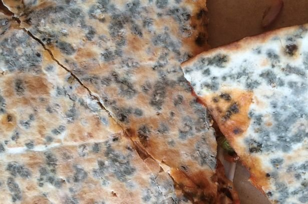 PAY-Mouldy-Dominos-pizza (1)